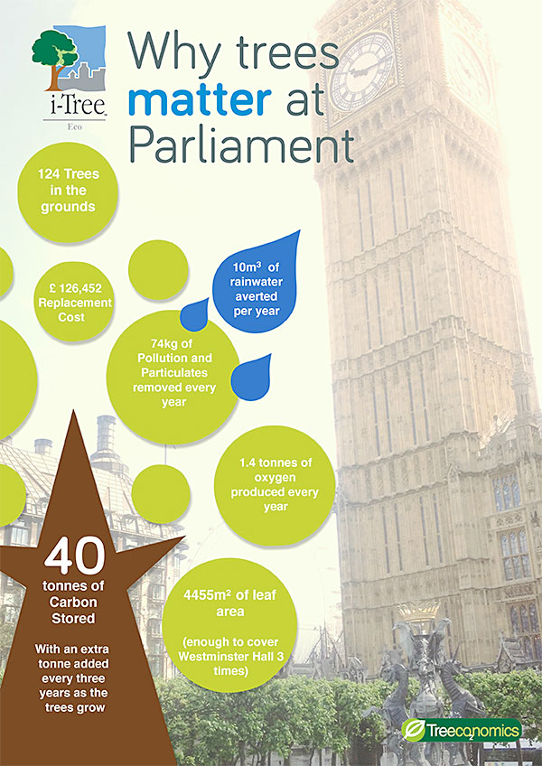 Why trees matter at Parliament