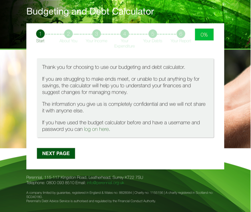 The Perennial Budgeting Tool