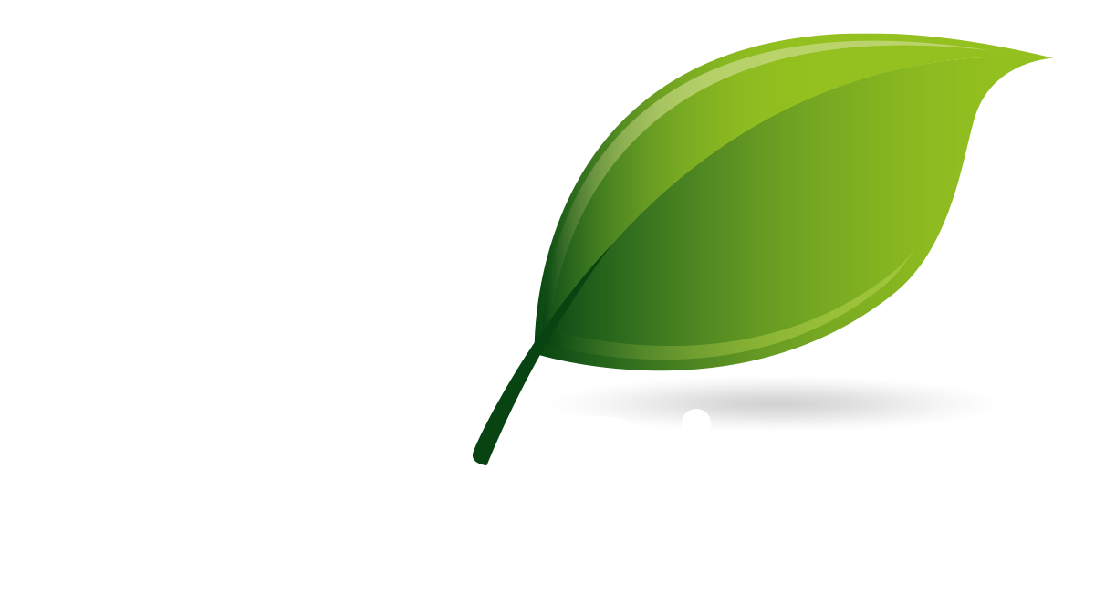 The ARB Show 2017 – Westonbirt the National Arboretum