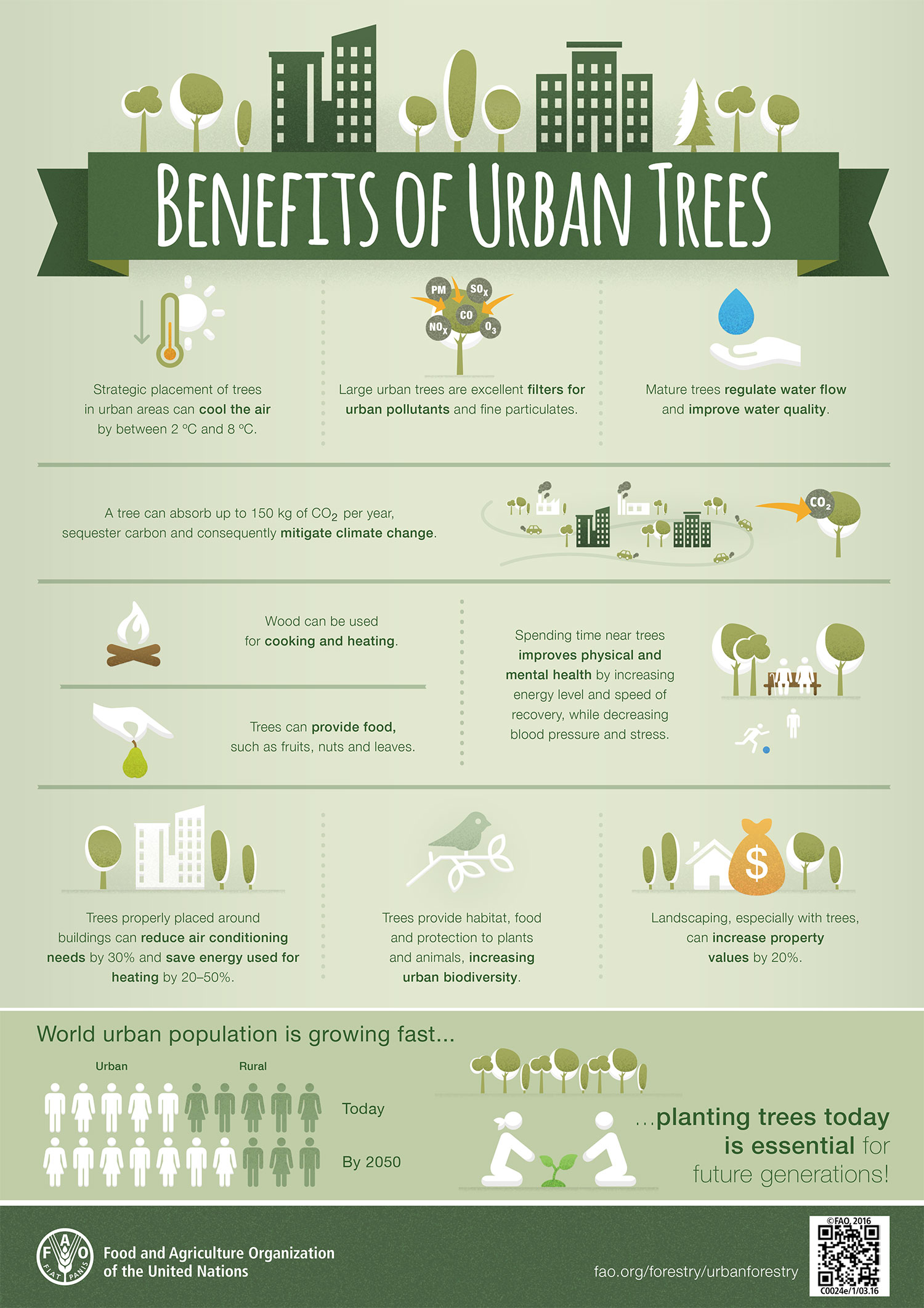 An infographic depicting the benefits of urban trees