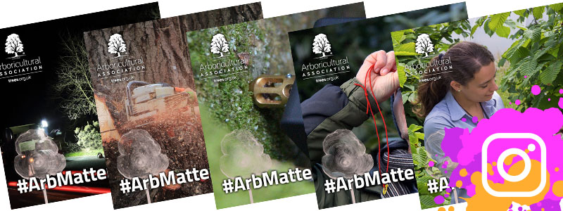 #ArbMatters Social Media Cards for Instagram