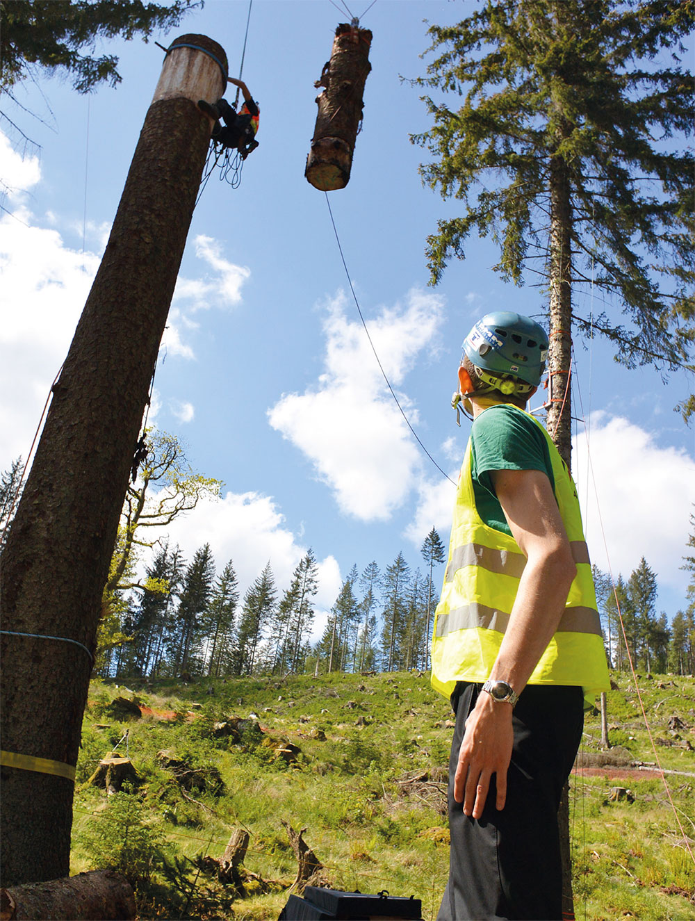 Lifting and resetting the test mass. The climber and mass were anchored with two fully independent systems. (Photo: Treemagineers Ltd)