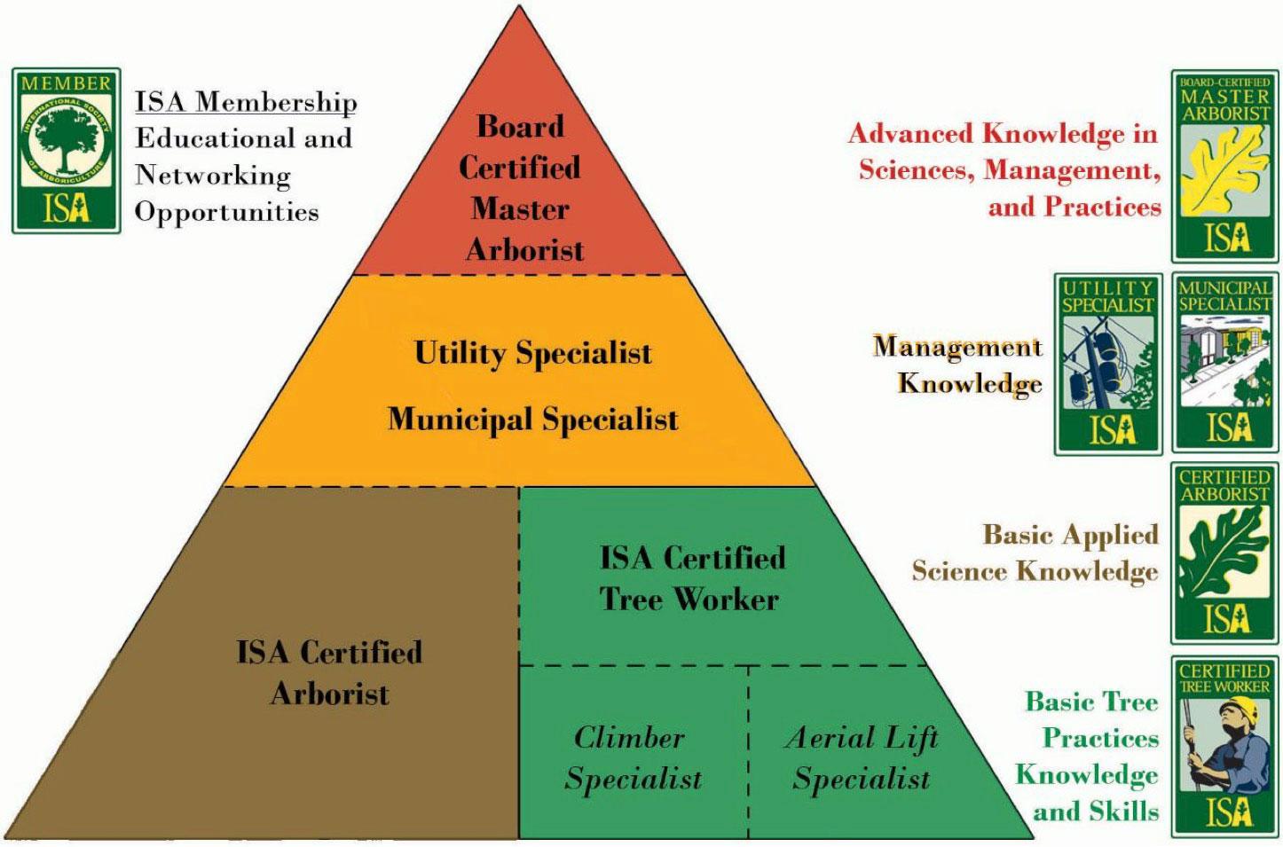 Arboricultural Association - International Society of