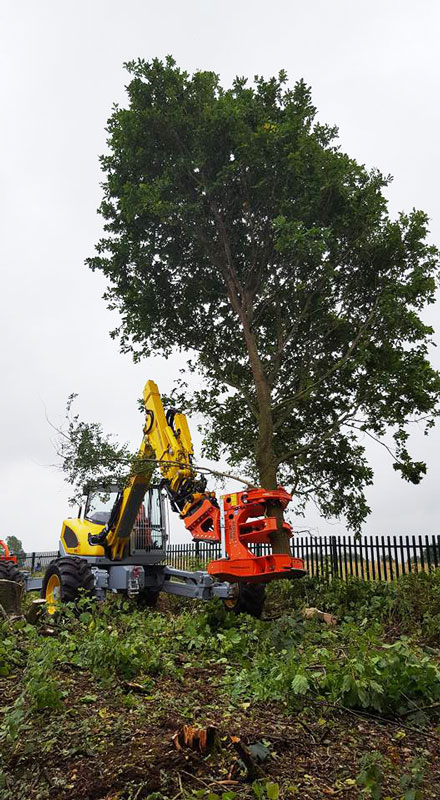 Ground Control machinery at work cutting down a mature tree