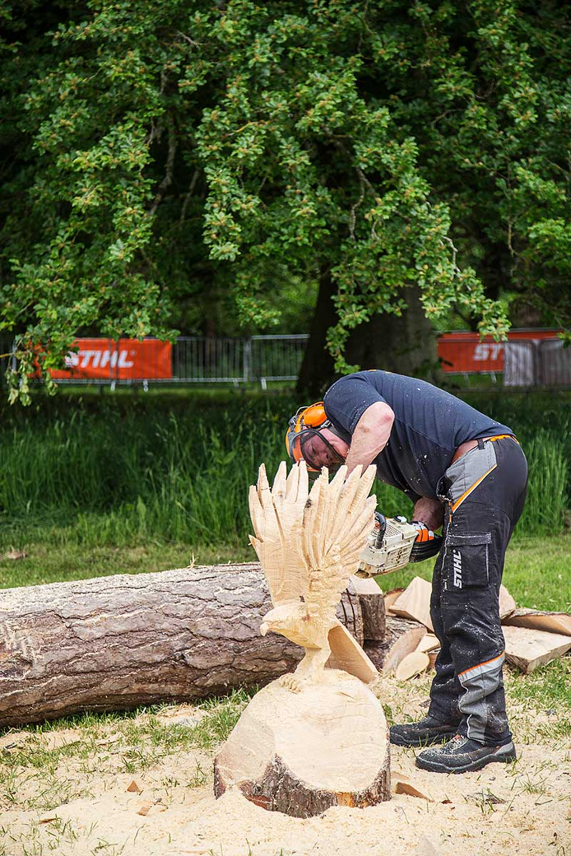 Wood sculptures with chainsaw demonstrations at the AA ARB Show 2016 at Westonbirt, The National Arboretum