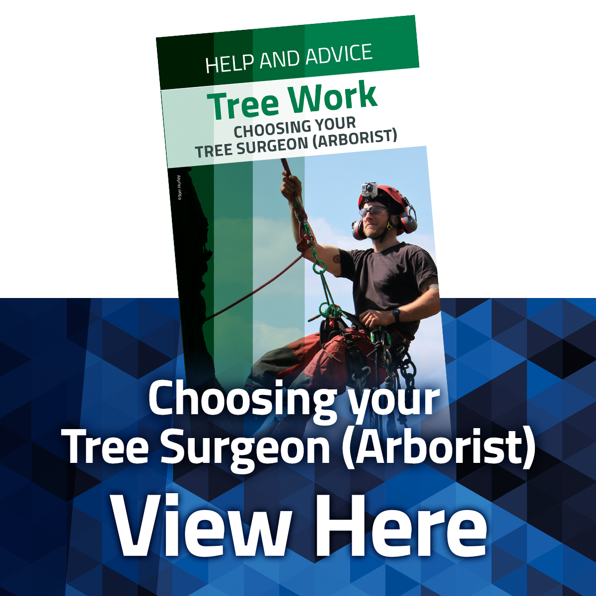 View the Choosing Your Arborist Leaflet