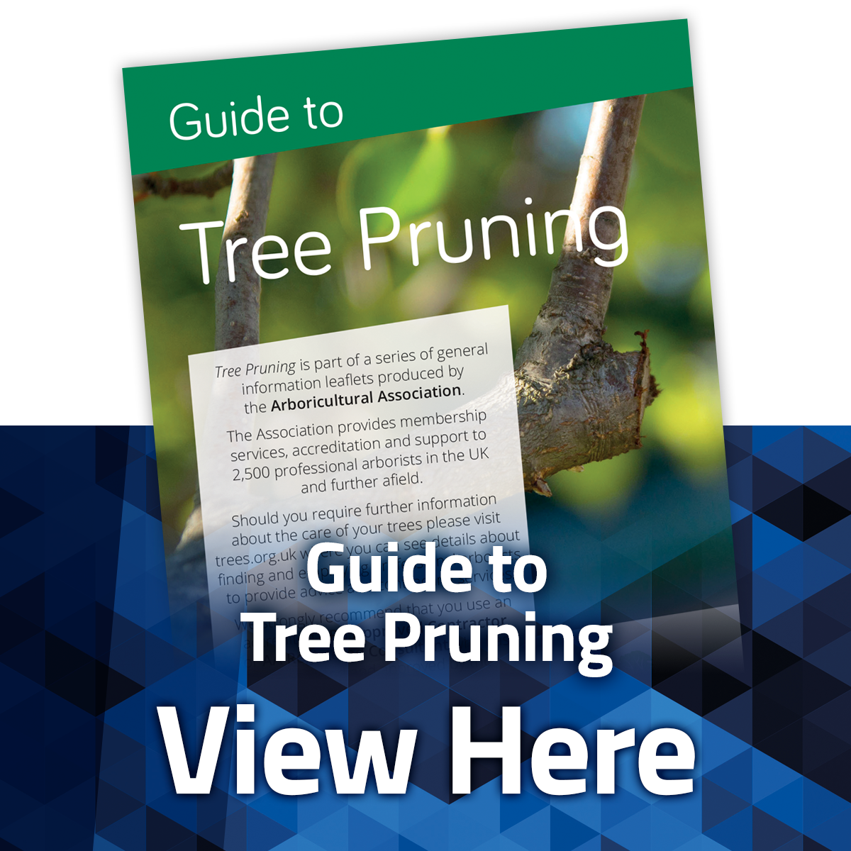 View the Guide to Pruning