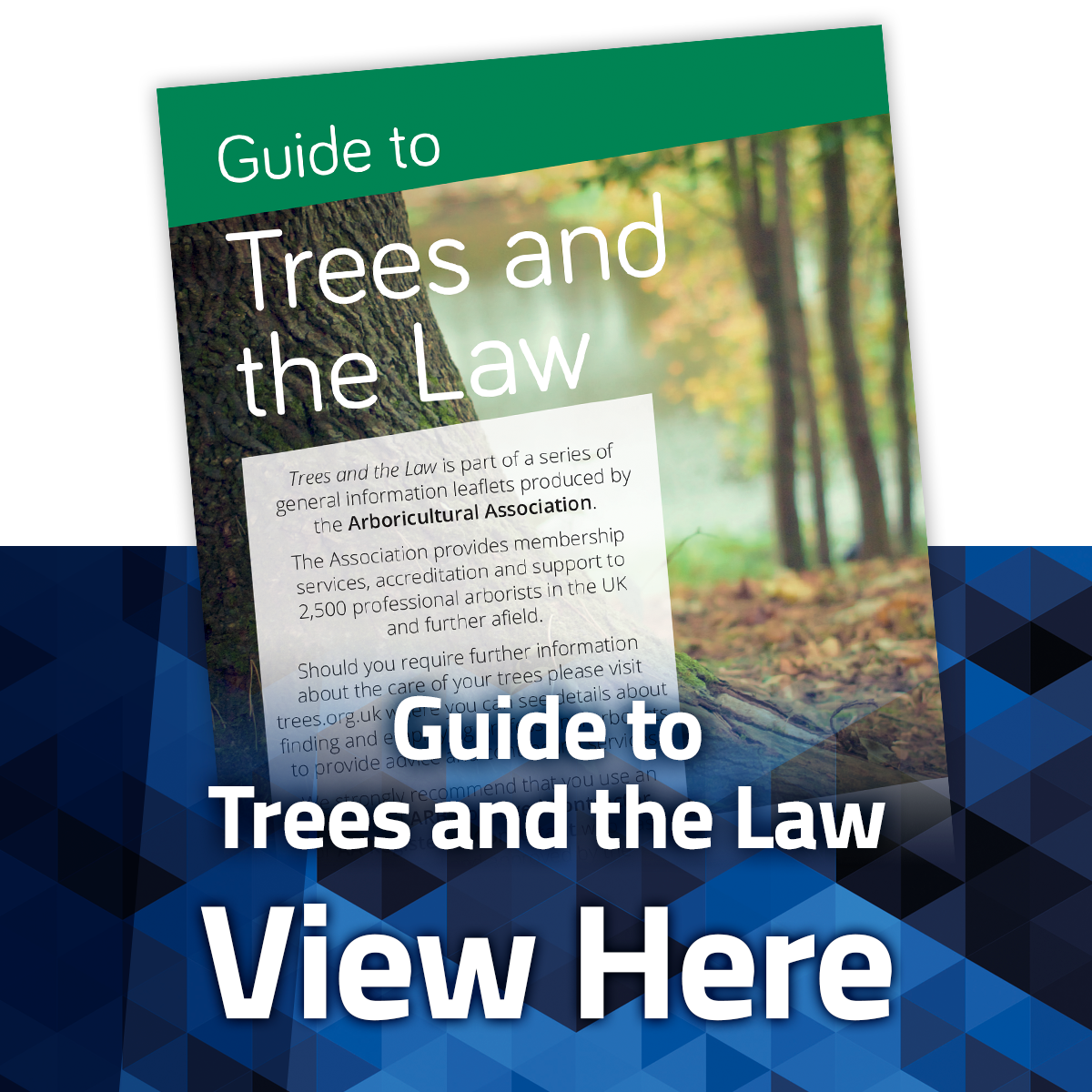 View the Guide to Trees and the Law Leaflet