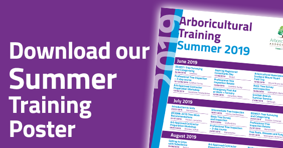 Download the 2019 Summer Training Poster