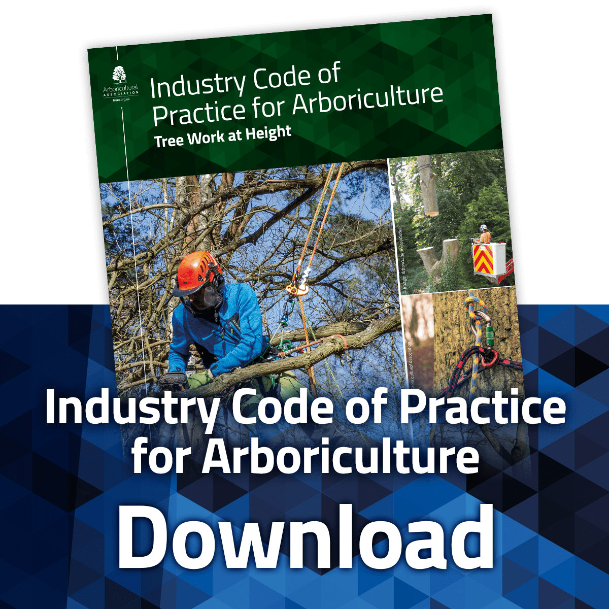 Download the Industry Code of Practice: Tree Work at Height