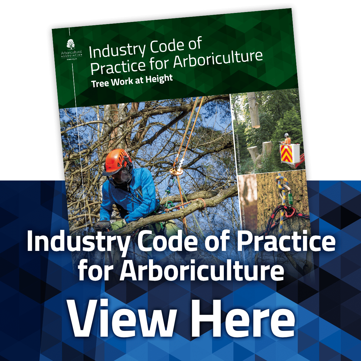 View the Industry Code of Practice: Tree Work at Height
