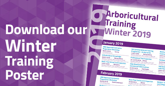 Download the 2019 Winter Training Poster