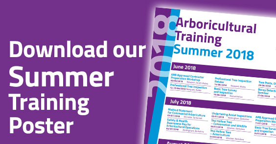 Download the 2018 Summer Training List