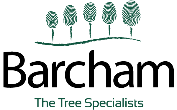 Barcham Tree Specialists