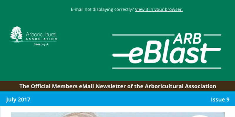 Email Bulletin adverising