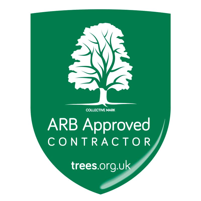 300 ARB Approved businesses