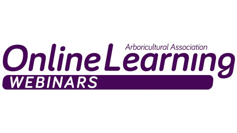 Online Learning Launches