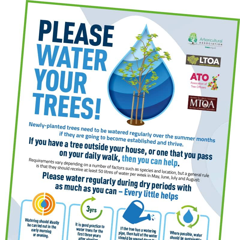 Tree watering campaign