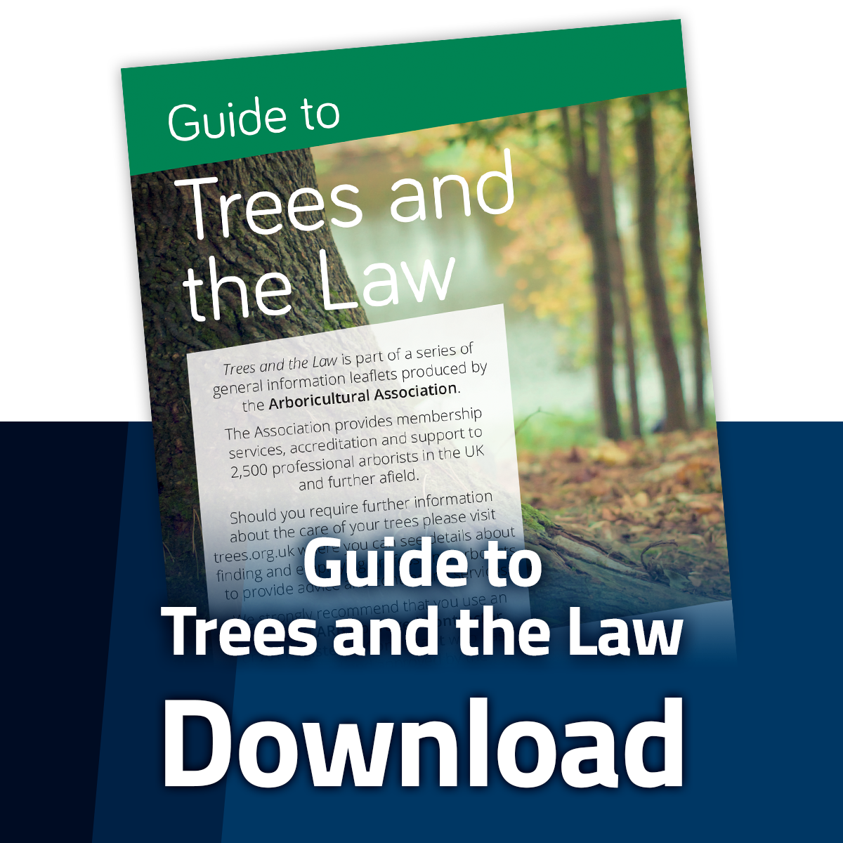 Download the Guide to Trees and the Law Leaflet