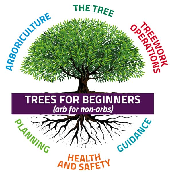 Trees for Beginners Launched