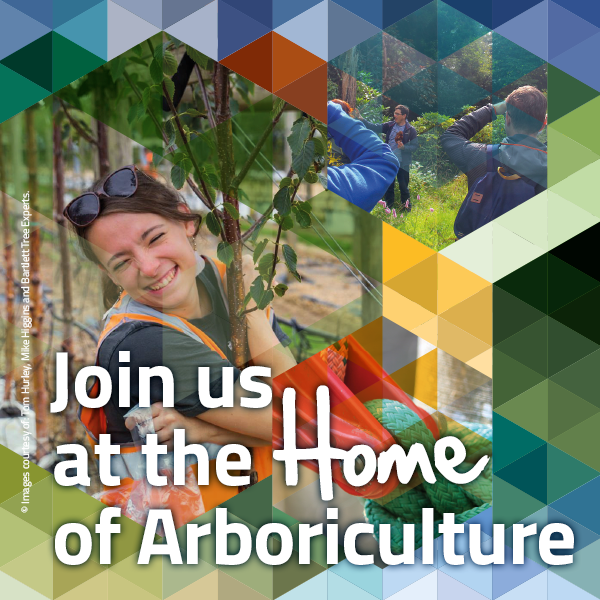 Arboricultural association home latest news fandeluxe Image collections