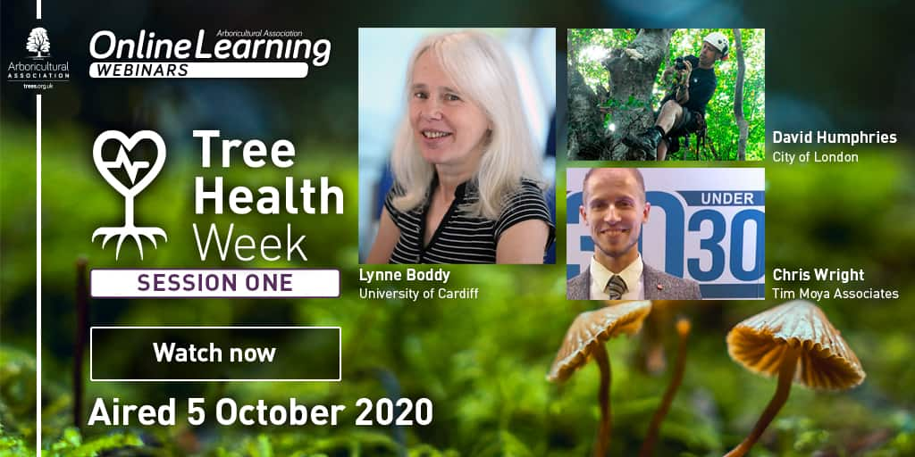 Tree Health Week – Session 1