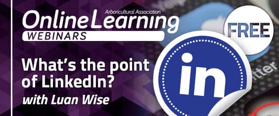 What's the point of LinkedIn? with Luan Wise