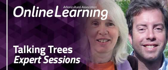 Talking Trees – Expert Sessions